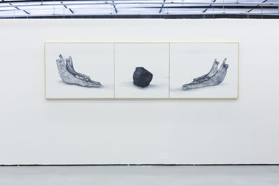 Renata De Bonis, 'Anthitesis ', 2014