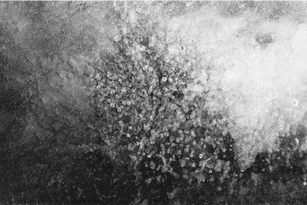 Nicolas Baghir, 'PN # 503-609', 2015