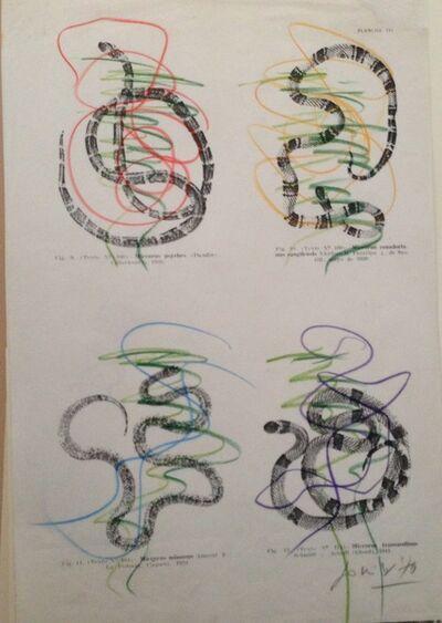 Jonier Marin, 'The Diabolical Snakes', 1970
