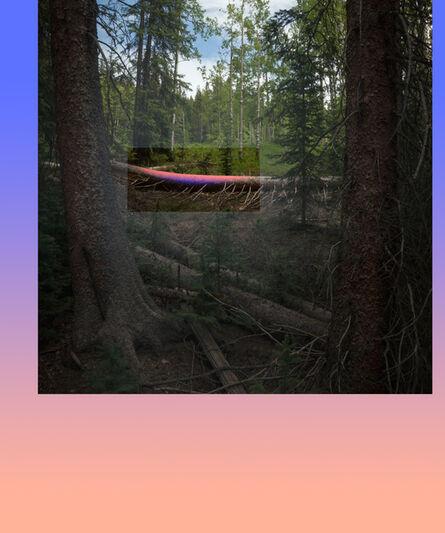 Mark Dorf, 'Emergent #19', 2014