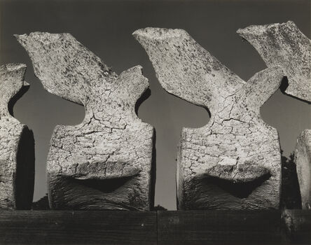 Edward Weston, 'Whale Vertebra', 1934