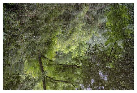 Daniel Ackerman, 'Reflejos VII | Reflections VII', 2016-2017