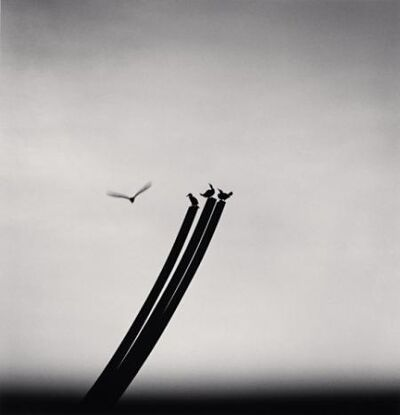 Michael Kenna, 'Four Birds, St Nazaire, France', 2000