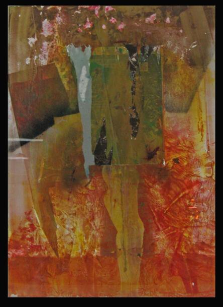 Patrick Collins, 'Elective Affinities ', 2013