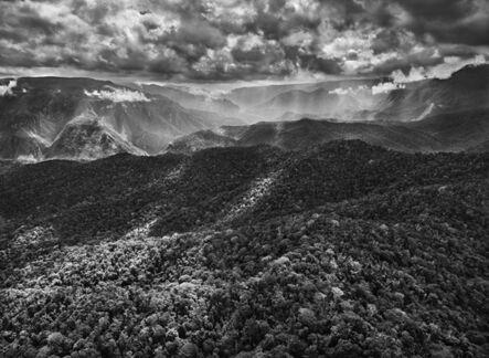 Sebastião Salgado, 'Genesis: The Amazon Rainforest Borders the Imeri Mountain Range, Amazonas, Brazil', 2009