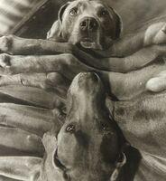 William Wegman, 'Dog Cabin (From Man Ray:  A Portfolio of 10 Photographs)', 1982