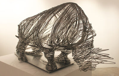 Li Hui, 'Captured Rhino', 2012
