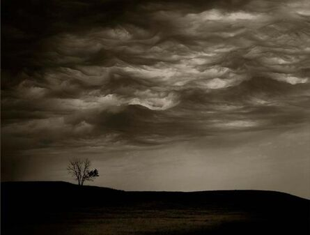 Jack Spencer, 'Cloud/Tree, South Dakota', 2007