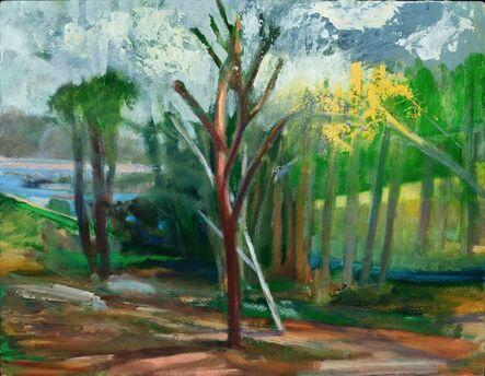 Donald Beal, 'Landscape', 2017
