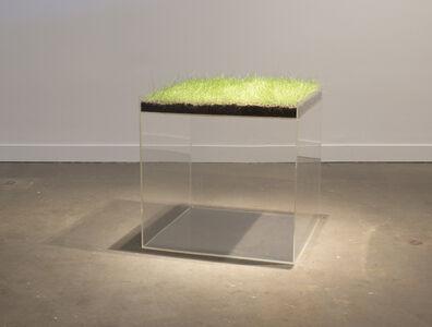 Hans Haacke, 'Grass Cube', 1967