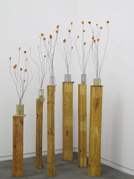Fernando Garcia, 'Naranjos', 2014
