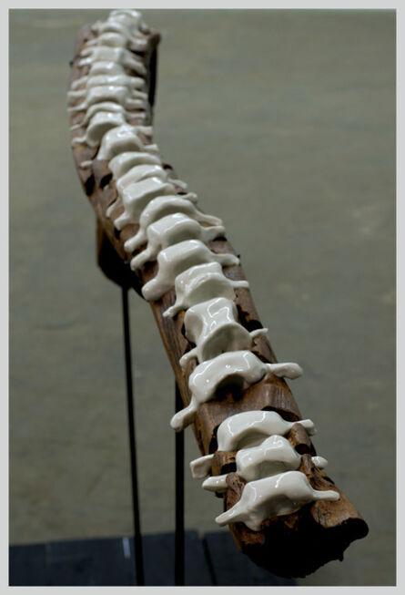 Cédric le Corf, 'L'ange anatomique', 2013