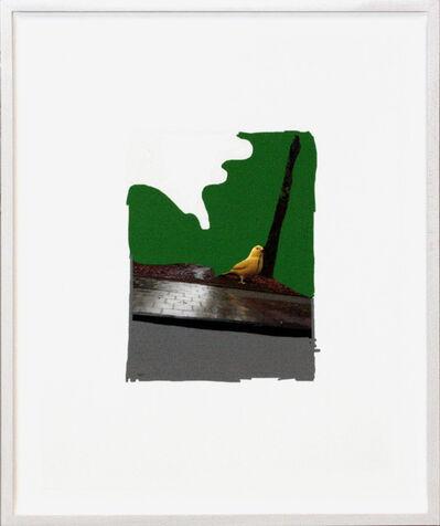 Frank Mädler, 'Pen:Vogel aug Baum', 2013