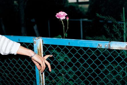Eiki Mori, 'intimacy (No#3)', 2013