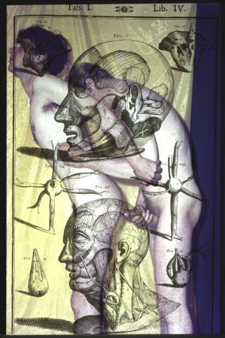 Jeffrey Silverthorne, 'Anatomical Drawing', 2013