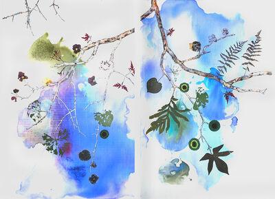 Marilla Palmer, 'Fruit of the Japanese Maple', 2013