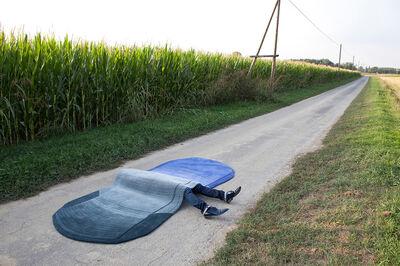 Lanzavecchia + Wai, 'Streamline Carpet', 2011