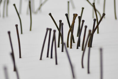 Glen Hayward, 'Everyday People (carved nail installation)', 2017