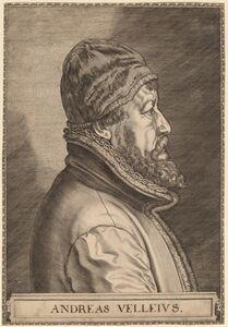 Johan Wierix, 'Andreas Velleius (Anders Sorensen Vedel)'