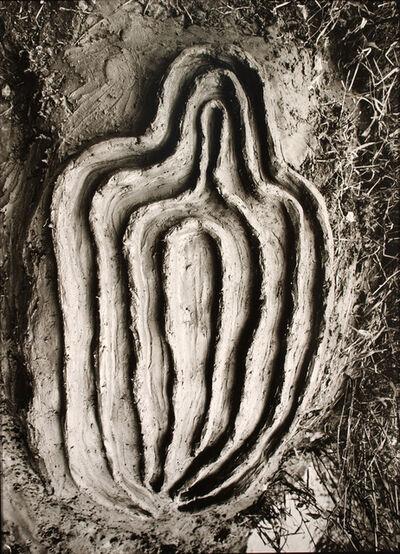 Ana Mendieta, 'La Vivificación de la Carne (Vivification of the Flesh)', 1982