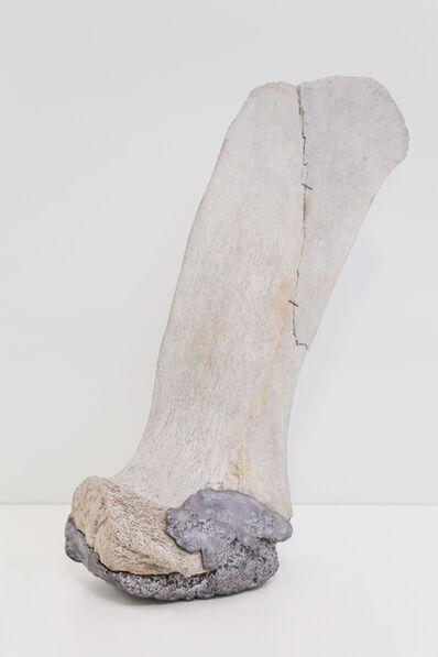 Ariel Spadari, 'série Fratura (em co-autoria com Lilian Colosso)', 2015