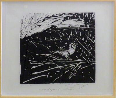 Ulysses Bôscolo, 'O pássaro de três olhos', 2015-2016