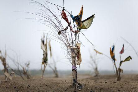 Lisa Ross, 'Black Garden (an offering)', 2009