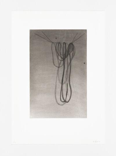 Al Taylor, 'Hanging Puddles I', 1991