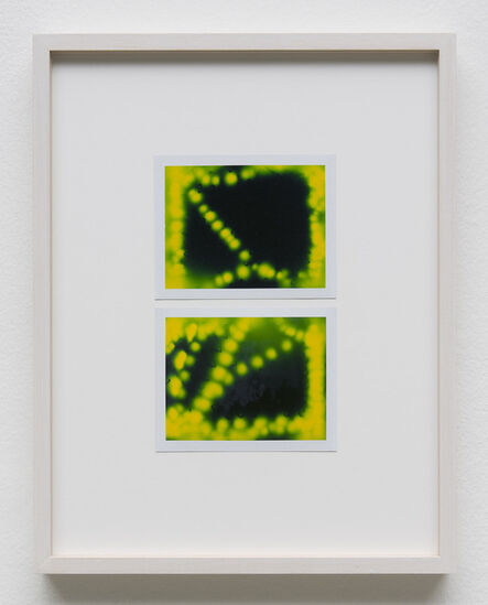 Peter Miller, 'Photuris #24', 2013
