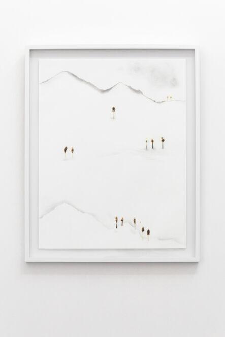 Diana Fonseca, 'Serie Bosques', 2015