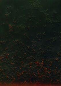 Tülin Onat, 'Redish Hobnail', 1990