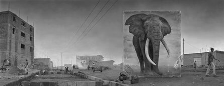 Nick Brandt, 'Road with Elephant', 2014