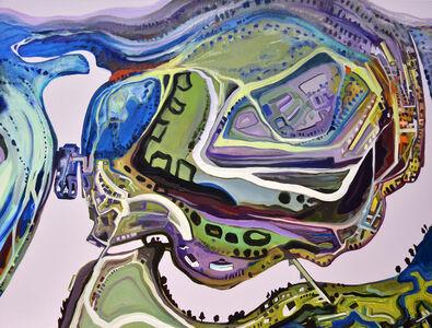 Sandy Litchfield, 'Hook and Swill', 2015