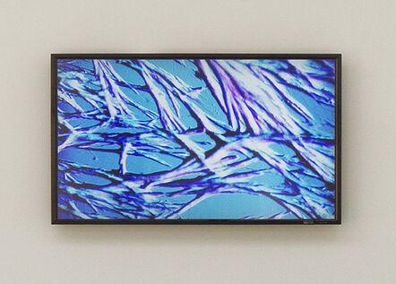 Tue Greenfort, 'Microscope Urea Crystals Video', 2014