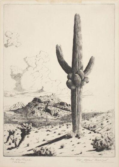 Alfred R. Waud, 'The Sentinel (Sahuaro)', 20th century