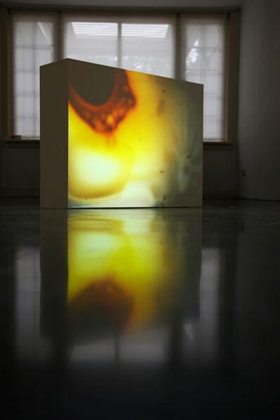Risk Hazekamp, 'Burn', 2015