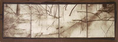 "Koichiro Kurita, '""Tangent II"" Arshomomaque Pond Preserve, NY', 2011"