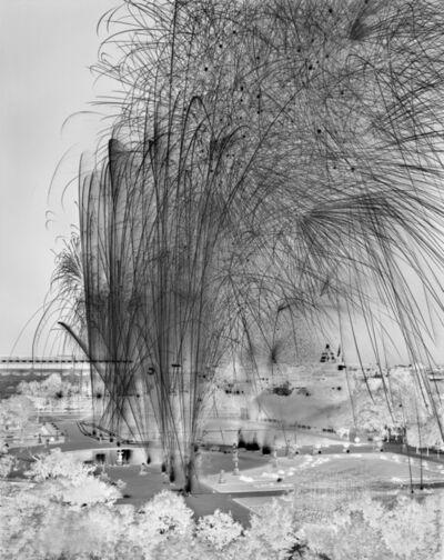 Damion Berger, 'Le Fiac II ,  Jardin des Tuileries , Paris ', 2009