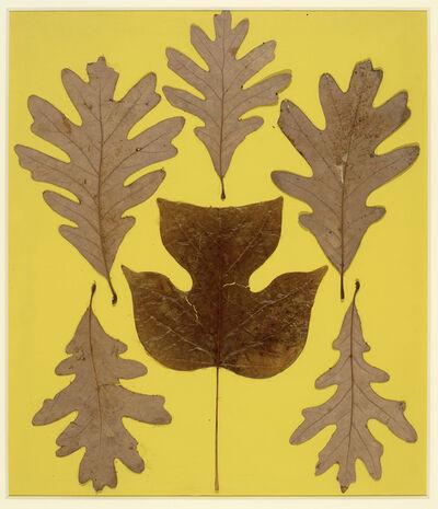 Josef Albers, 'Leaf Study IX', c. 1940