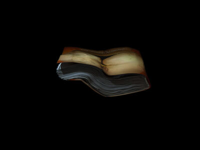 Richard Finkelstein, 'Pages from the Papal Library', 2018