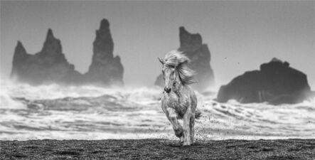 David Yarrow, 'White Horses, Iceland', 2018