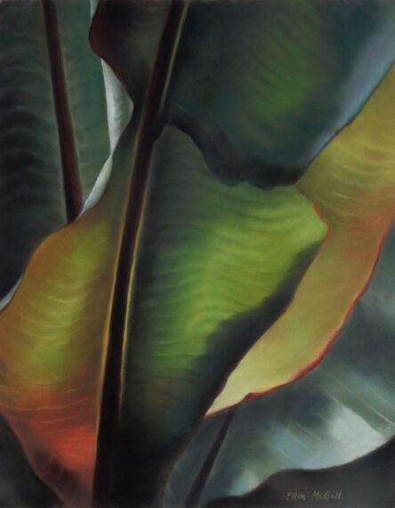 Ellen McGill, 'Tropical Leaves', 2014-2019
