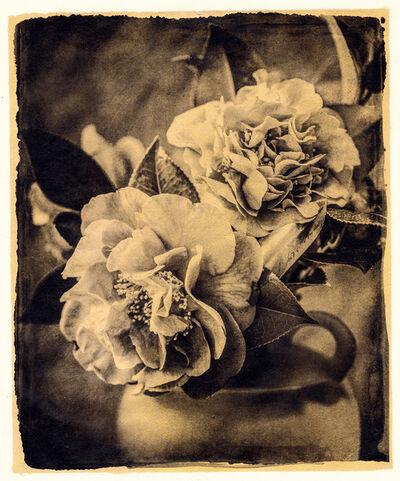 Brigitte Carnochan, 'I Hide Myself Within My Flower', 2018