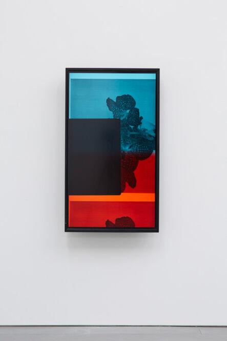 Maria Taniguchi, 'I see, it feels', 2015
