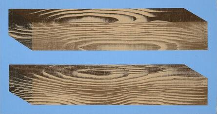 KATHARINA MADERTHANER, 'What wood you do?', 2016