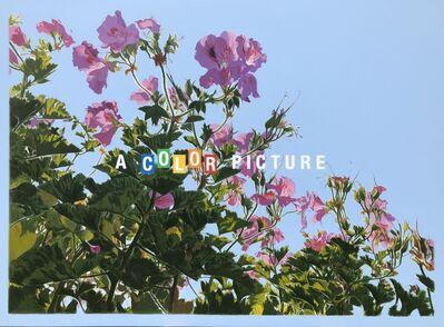 Luke Butler, 'A Color Picture II ', 2021