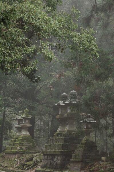 David H. Gibson, 'Toward Kasuga Shrine, Along Pathways of Lantern (08 5095-5097)'