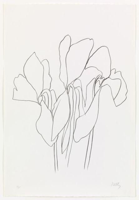 Ellsworth Kelly, 'Cyclamen V', 1965