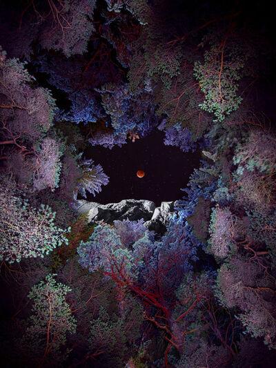 Linda Westin, 'Illuminated Dendrology - Lunar Introspection', 2020