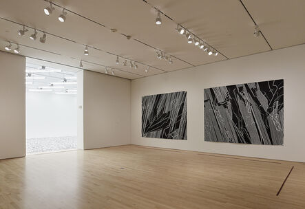 """'Installation view """"Field Conditions"""", 2012'"""